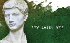 Which latin program