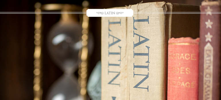 Latin: The Basic Subject