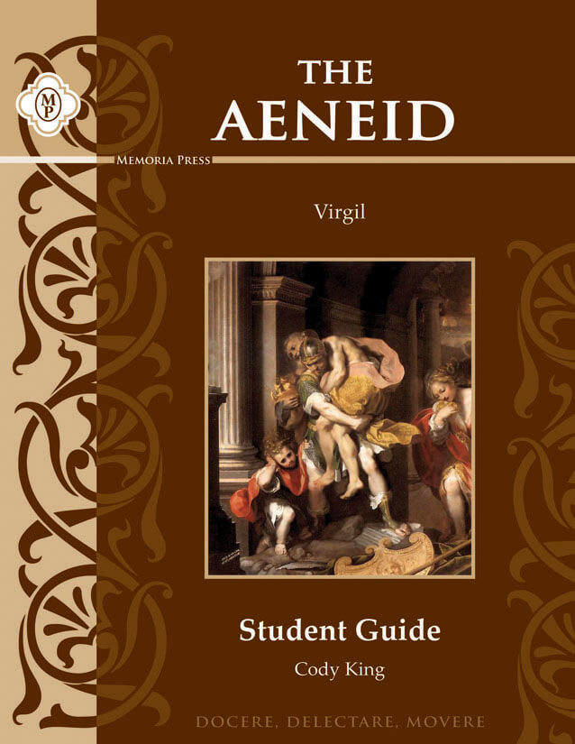 the significance of the authority in virgils the aeneid Of augustan authority one important facet of the aeneid's  modern political significance of claiming virgil for  virgil's aeneid.