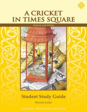 Times Square Student Guide