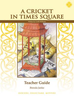 Times Square Teacher Guide