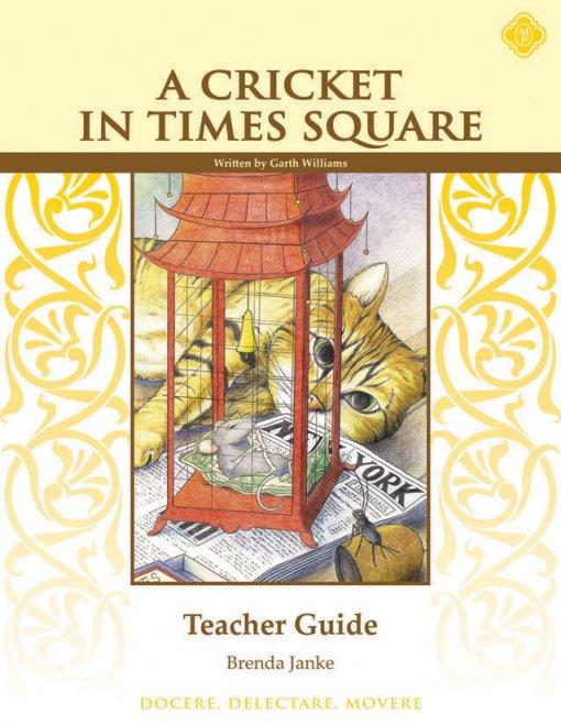 Times Square Teacher Guide