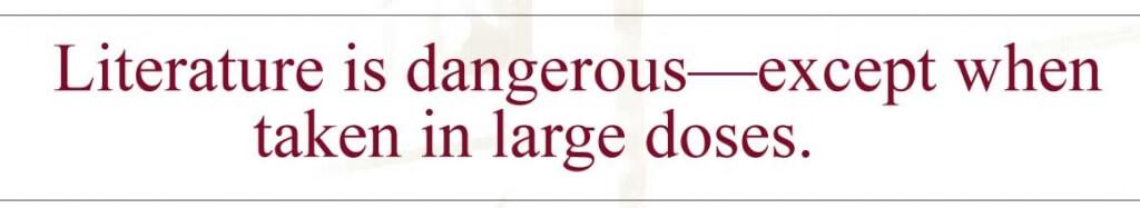 Harry-Potter-Lit-Dangerous