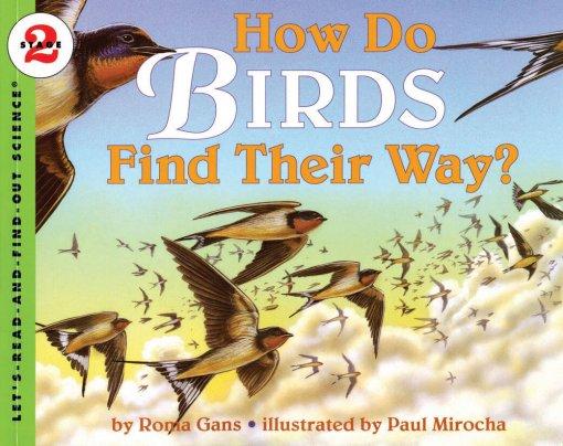 How Birds Find Their Way