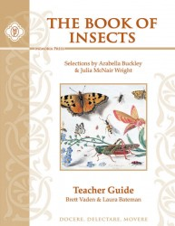 Insects_TeacherKey