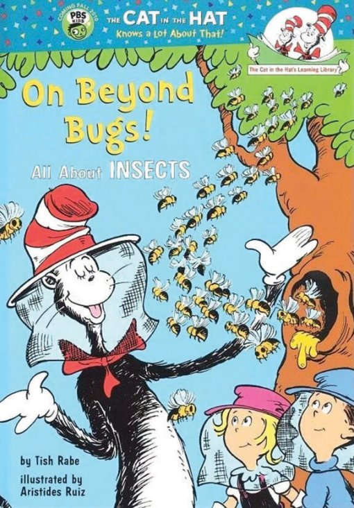 On-Beyond-Bugs