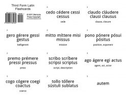 Third Form Latin Flashcards