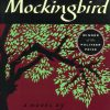 To Kill a Mockingbird Novel