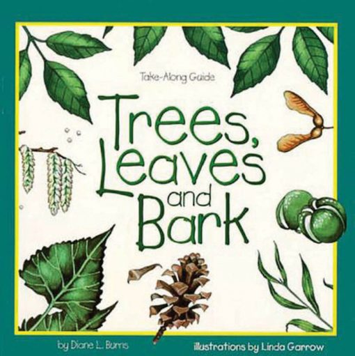 Trees, Leaves, and Bark