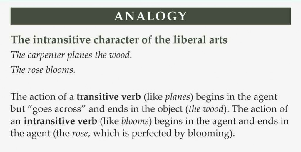 What-Are-Liberal-Arts-Analogy