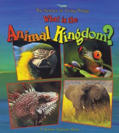 what is the animal kingdom