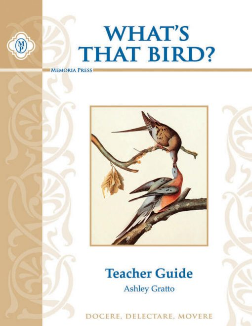 What's That Bird Teacher